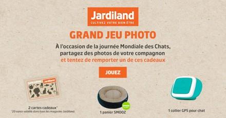 Concours : faites le plein de cadeaux pour votre chat avec Jardiland et Wamiz !