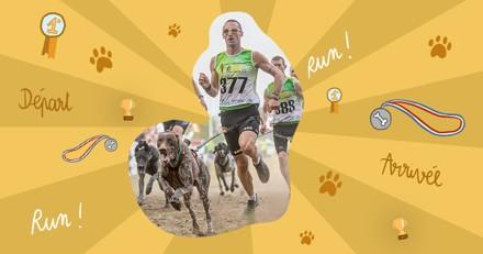 Comment faire faire de l'exercice à son chien sans qu'il ne se blesse ? Suivez les conseils du champion du monde de canicross !