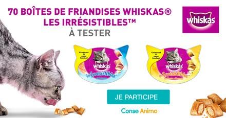 Testez les friandises Whiskas® Les Irrésistibles™ avec votre chat !