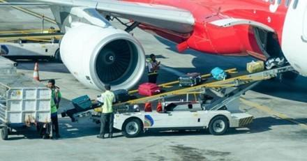 Le contrôleur aérien découvre une cage entre les valises : paniqué, il se rend compte de ce qui s'est passé