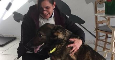 5 ans après sa disparition de sa chienne, une chienne retrouvée à 250 mètres de chez elle