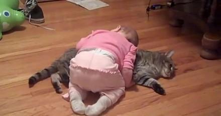 Il voit son bébé se jeter sur le chat : il n'aurait jamais imaginé de quoi il serait témoin (Vidéo)