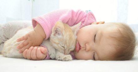 Ce chat vole au secours d'un bébé maltraité ! (Vidéo)