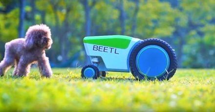 Cette nouvelle motocrotte automatique ramasse les déjections de votre chien à votre place !
