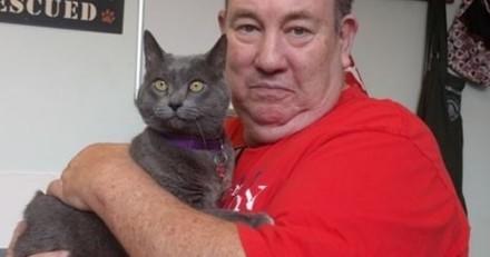 Un chat retrouve sa famille après avoir disparu pendant 11 ans