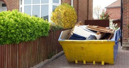 Chiots abandonnés dans une benne à ordures : une bénévole arrive et réalise qu'il y a une erreur