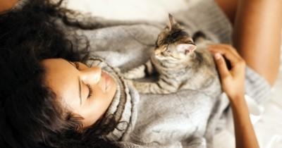 Comment reconnaître un chat heureux ?