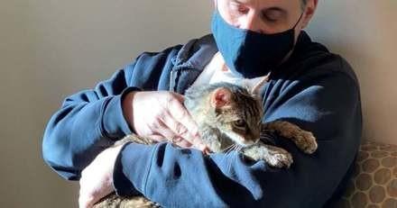 Après 15 années sans nouvelles de son chaton, il n'en croit pas ses oreilles quand le refuge l'appelle