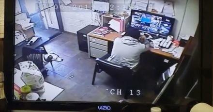 Alors qu'il travaille à son bureau, il entend un bruit et ne peut s'empêcher de sourire (Vidéo)