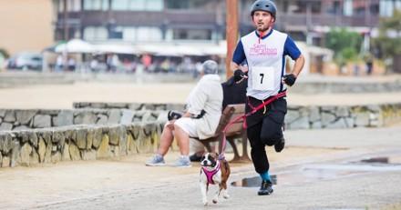 Avis aux sportifs et d'amoureux de chiens : participez à un cani-triathlon wouf !