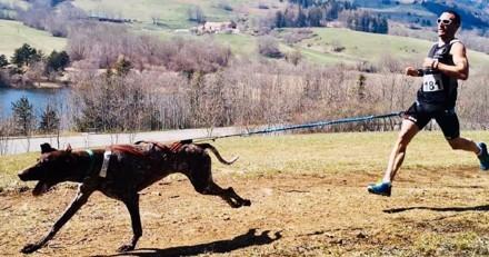 Antony Le Moigne : « Ce que je ressens quand je cours avec mes chiens est juste magique »