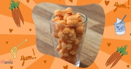 Recette facile pour chien : les friandises glacées à la carotte (ou potiron)