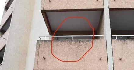 Il sort sur son balcon et ce qu'il découvre chez le voisin lui glace le sang