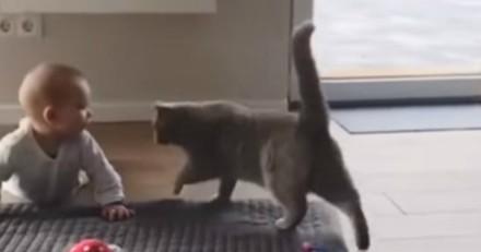 Elle voit son chat s'approcher du bébé et craque totalement en voyant ce qu'il fait (Vidéo du jour)