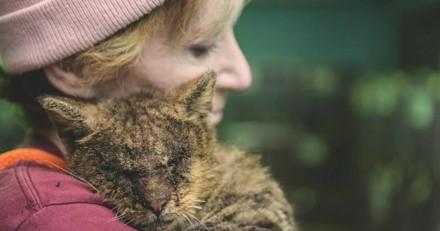 Elle prend dans ses bras un chat que personne ne voulait toucher, il la remercie de la plus belle des façons