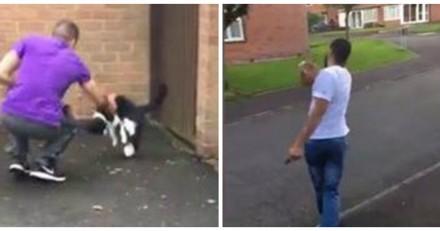 Filmé en train de maltraiter un chat, il fait quelque chose d'à peine croyable