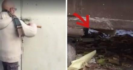 Ils entendent des petits cris venant d'une poubelle, s'approchent et sont sous le choc (Vidéo)