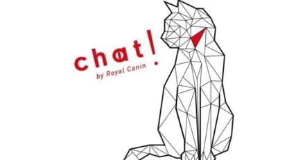 Chat ! l'espace éphémère 100% dédié à la culture féline qui va vous faire ronronner