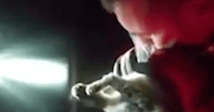 Volcan Cumbre Vieja : un militaire tente de réanimer un chat intoxiqué par la fumée