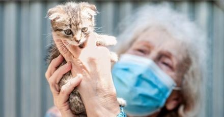 Reconfinement : selon le ministre de l'Agriculture, les refuges animaliers pourront rester ouverts !