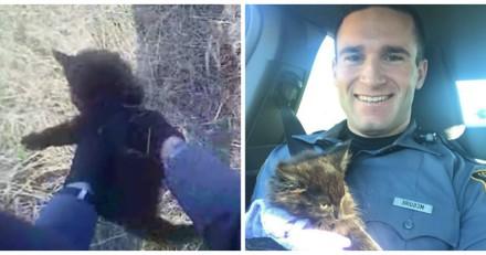 Pour rassurer un chaton terrifié, ce policier a une idée adorable (Vidéo)