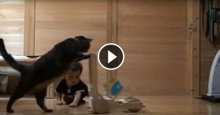 Ce chat apprend à un bébé à marcher et c'est adorable ! (Vidéo du jour)