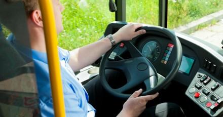 Le chauffeur voit une ombre bondir sur son bus : il freine de toute urgence, mais comprend qu'il est trop tard