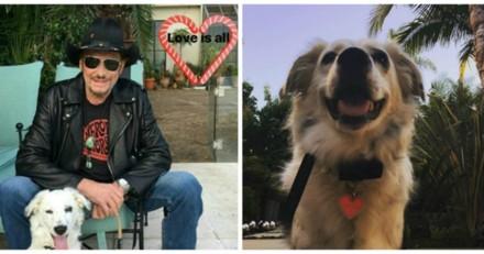 Cheyenne : la chienne de Laeticia Hallyday est triste depuis le départ de ses maîtresses
