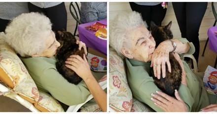 Agée de 103 ans, elle trouve le compagnon parfait après la perte de son chat adoré