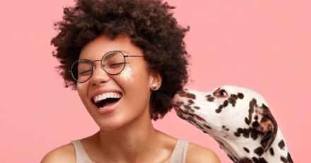 10 choses insolites au sujet des chiens que vous devez ABSOLUMENT savoir !