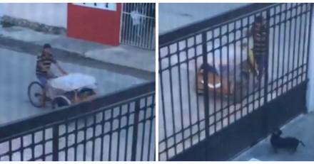 Elle voit le boulanger s'approcher de son chien et n'en revient pas de ce qui se passe (Vidéo)