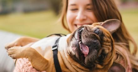 5 choses que vous ne devez jamais (mais alors jamais) faire à votre chien