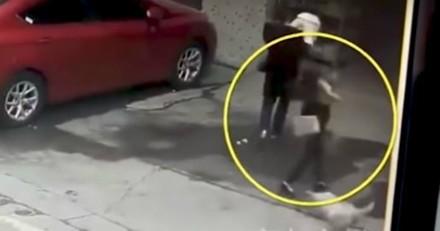 Un chien tombe du ciel et assomme une femme, la vidéo fait le tour du monde