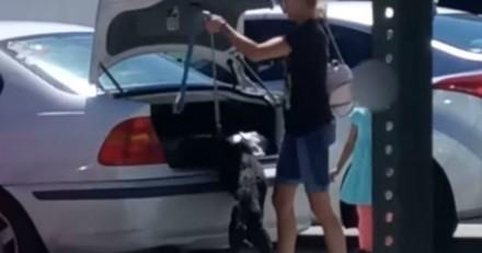 Elle enferme son chien dans son coffre : les policiers arrivent et découvrent une vérité encore plus terrible