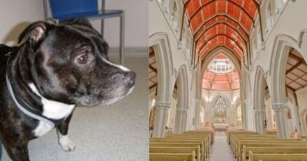 Le prêtre entre dans l'église et voit un chien attaché à l'autel avec un petit mot déchirant