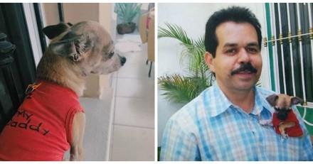 Le chien s'approche des vêtements de son ancien maître, ce qu'il fait ensuite a fait couler des larmes (Vidéo)