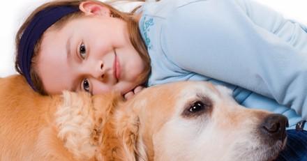 Ce chien de sauvetage soutient les enfants au tribunal