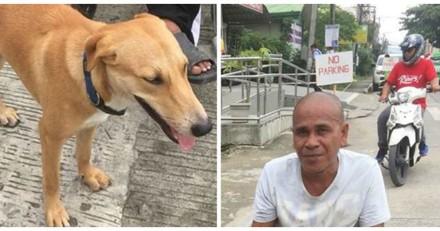 Elle croise un homme et son chien dans la rue, quand elle s'approche elle ne peut retenir ses larmes (Vidéo)