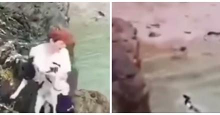 Chasse à l'homme : une personne se filme en train de jeter un chien depuis une falaise (Vidéo)
