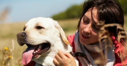 Elle obtient deux jours de congés payés pour faire soigner son chien malade
