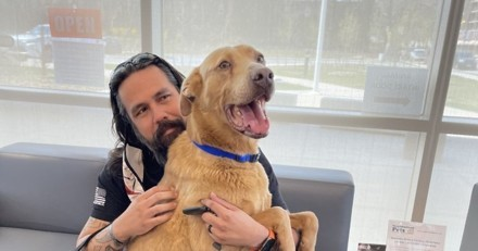 Un homme a juré qu'il n'abandonnerait jamais son chien perdu : 5 ans après, il a l'électrochoc de sa vie