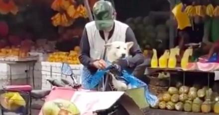 Sous une pluie battante, cette homme a fait la plus belle des choses pour son chien (Vidéo)