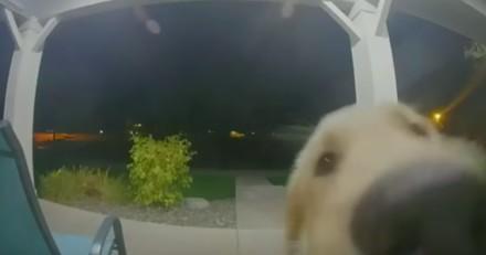 On sonne au milieu de la nuit : il va ouvrir et a un choc en voyant qui est derrière la porte