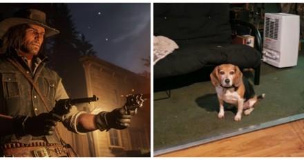 Red Dead Redemption 2 : il croise un chien dans le jeu, la réaction de son toutou fait le tour du monde