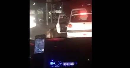 Chien seul sur un trottoir : une voiture s'arrête, la portière s'ouvre et tout bascule en 1 seconde