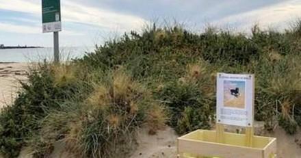 Il se promène sur la plage et croise un boite avec une pancarte : ce qui est écrit le chamboule