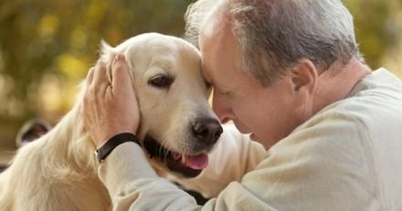 Une maison de retraite va adopter un chien !