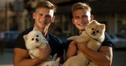 Selon cette étude, votre amour des chiens est peut-être génétique !