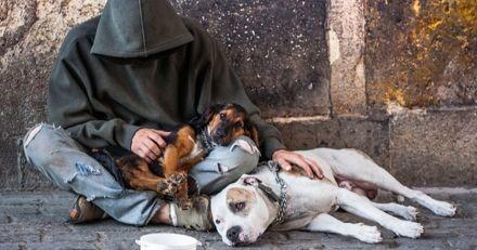 Sur cette péniche parisienne, des personnes sans abri sont hébergés avec leurs chiens (Vidéo)