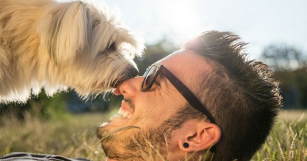 Comment être complice avec son chien ?